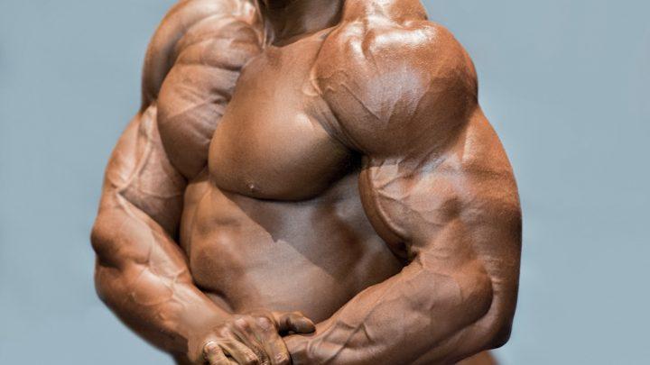 知っているようで知らない筋肥大のメカニズム